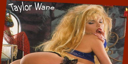 Taylor Wane DVD shop